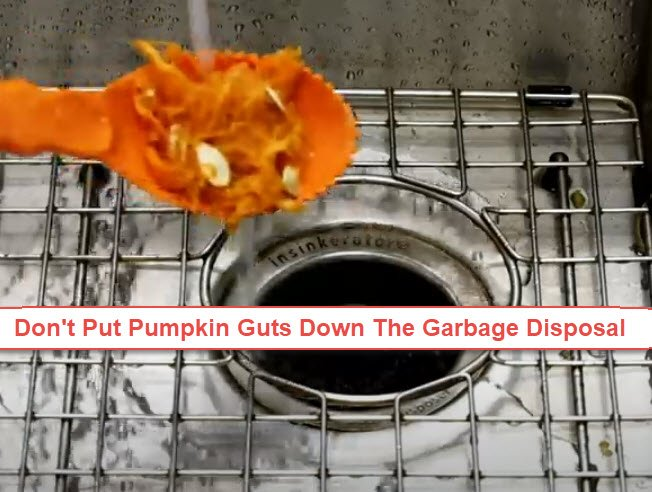 Don't Put Pumpkin Guts Down The Garbage Disposal. Plumber Near Me USA .com