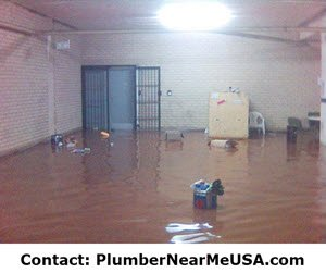 Flooded house needs water damage restoration. Plumber Near Me free estimate.